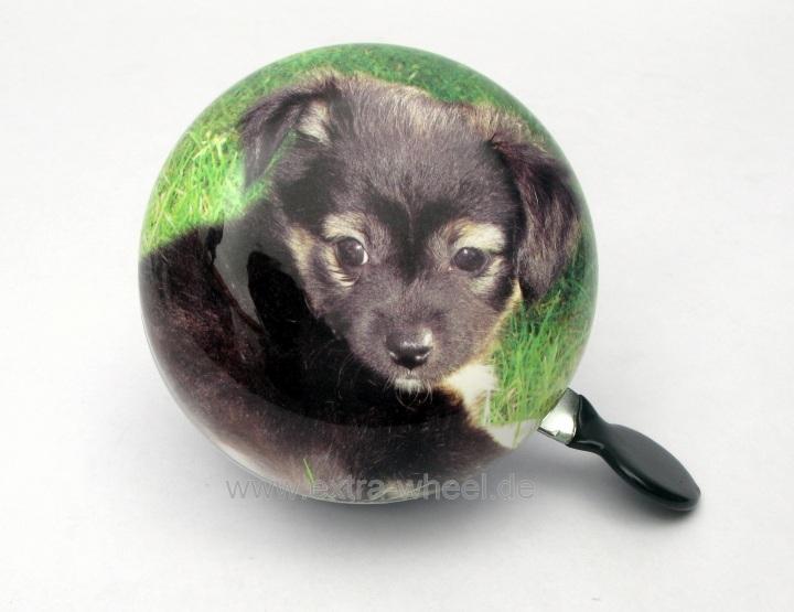 Fahrradklingel Ding Dong Glocke 80mm Hund Chihuahua welpe